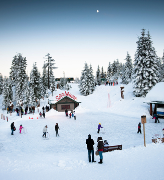 Picture Credit - GrouseMountain.com